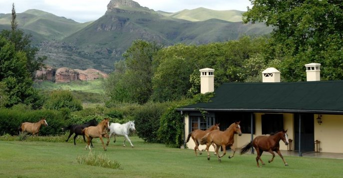 Отель Dos Lunas Horse Riding Lodge 4*