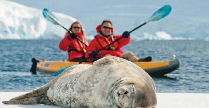 Новый год 2020 в Антарктиде с Дмитрием Крыловым на яхте le boreal 11 дней