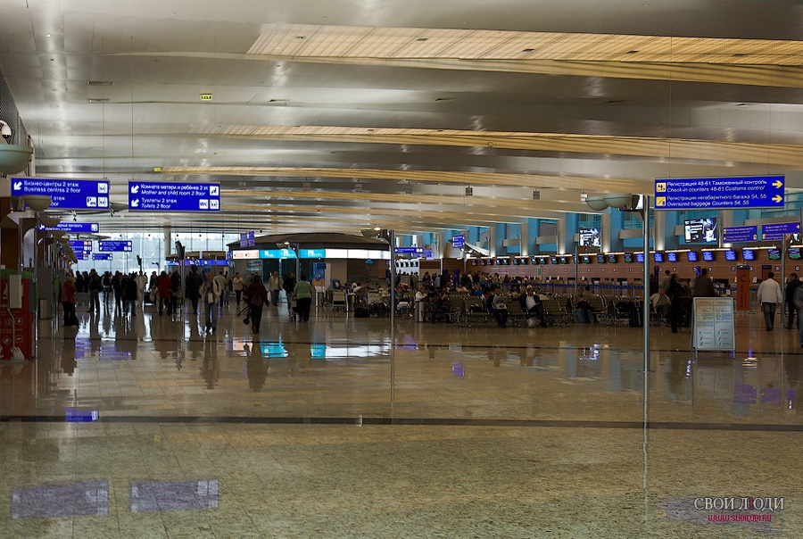 d фото из шереметьево терминала