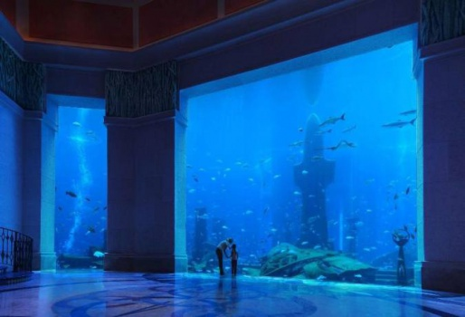 Отель Atlantis The Palm 5* - Дубаи, ОАЭ