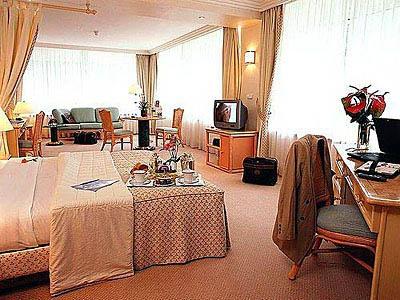 sofitel vichy les celestins 4. Black Bedroom Furniture Sets. Home Design Ideas