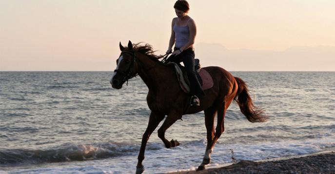 Скачать игру езда