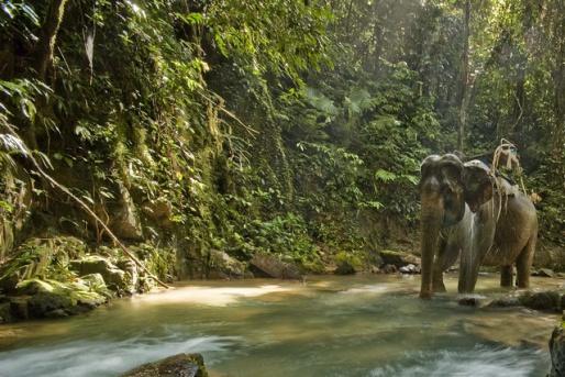 Национальный парк Кхао Пхра Тхаю - остров Пхукет, Таиланд