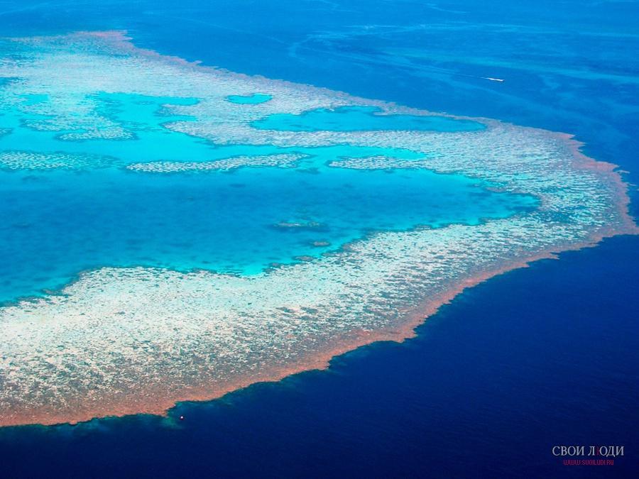 Австралия фото большого барьерного